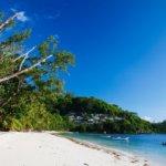 Lune de miel aux Seychelles : profiter de ses 3 principales îles